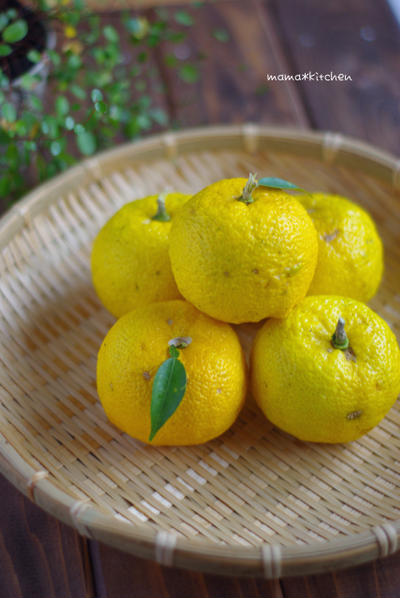 子供も飲める♡苦味をおさえた、柚子茶*9月の中旬頃は、どこに居たんだね?