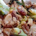 鶏肉と長ネギのテリヤキ【レシピ】