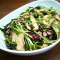 【簡単レシピ】タコの水菜とわかめのサラダ♪中華風味♪ by bvividさん