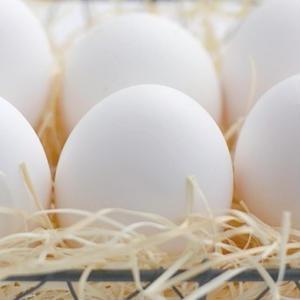 剥きやすいゆで卵を作るには「茹でる前」も重要だった?