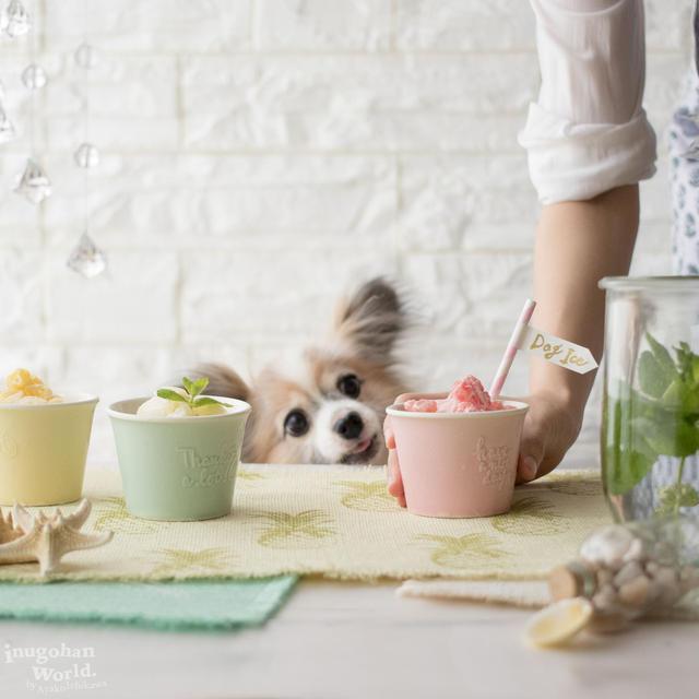 ■水分補給&熱中症対策に♪ 冷凍庫に常備したい!冷たい犬おやつレシピ