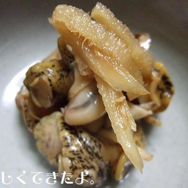 ツブ貝のあっさり生姜煮