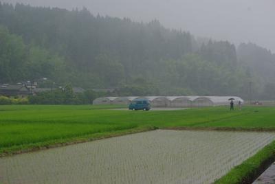 宮崎へ行ってきました〜!農家さんの激旨トマトで♡和えるだけサラダ!