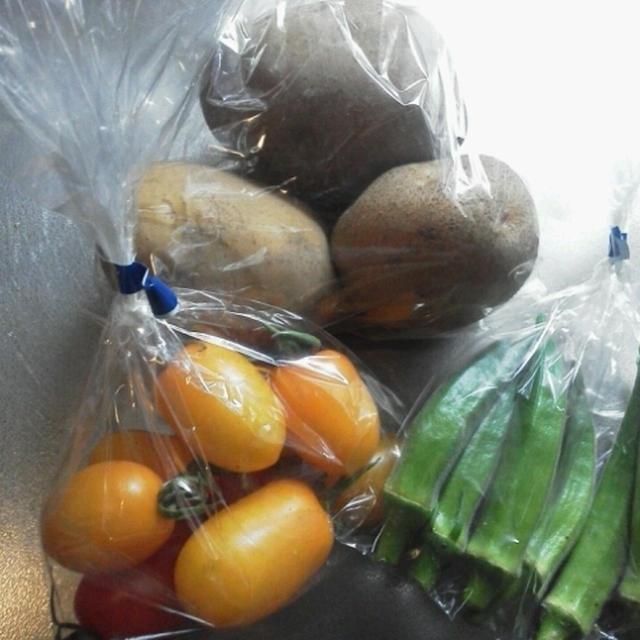 新鮮もぎたて野菜、どうやって食べよう~☆(料理ネタ)