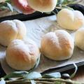 HBで♡基本のとろける丸パン