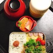 食べてみたかった納豆麻婆豆腐・納豆ポテトサラダ・豚の生姜焼き弁当