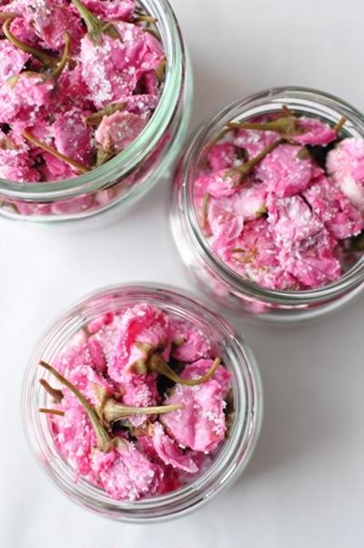 桜、いつまでも。。。  桜の花の塩漬け