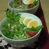 サラミチーズとツナのグリーンサラダ