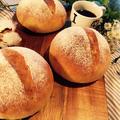 豆乳仕込みの丸パン♪アレルギーにも対応したレシピを。