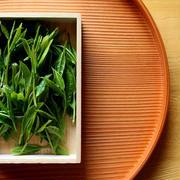 日本茶の文化を伝承する新機軸『嬉野茶時 in 雲海』特別賞味会