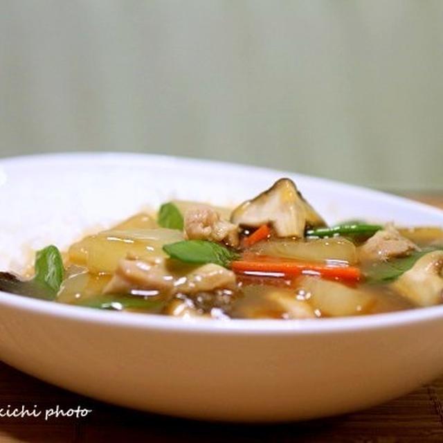 美味〜「鶏肉と大根のスープあんかけご飯」&「お節と初詣」そして私はブログを更新!!