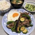牛肉と茄子のピリ辛味噌炒め