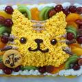 ぴよ三郎*7歳の誕生日ケーキは茶トラ猫ちゃんケーキ
