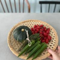 前に進まないと感じるとき@はるきちオーガニックファームさんのお野菜