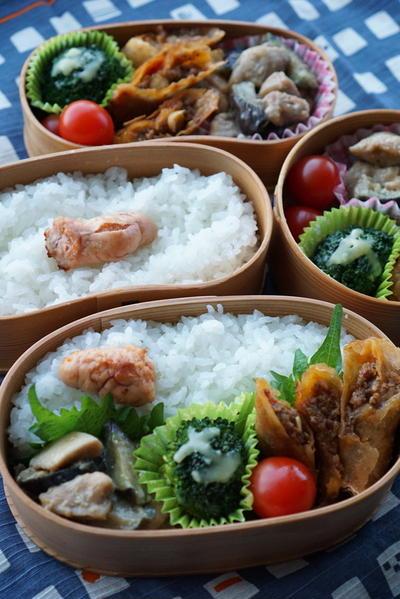 カレー春巻きと鶏と茄子の味噌炒め弁当