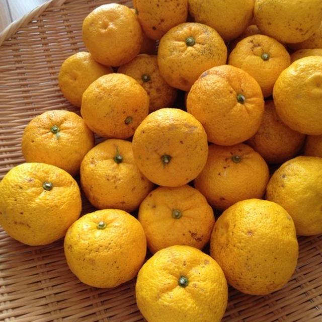 恒例の「柚子酢」と「柚子ジャム」を作る。
