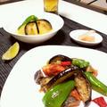 生銀鮭 茄子 ピーマン 香ばし爽やか炒め。 冷たい冬瓜塩麹煮を同じ野菜で和えました。 夏の晩酌
