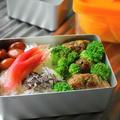 葱バーグ・金時豆・茄子と茗荷のおつゆ・・・おっと弁