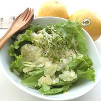 グリーンリーフ&ホワイトグレープフルーツのサラダ