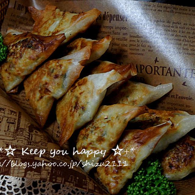 +*豆腐と野菜のスパイス春巻きギョーザ+*