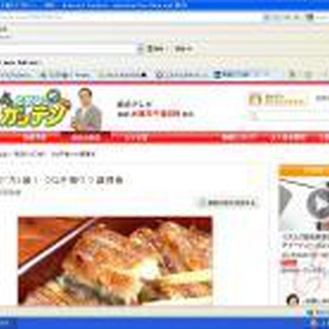 キッチンの節電2!「トースターから魚焼きグリルへ」~グリル石 エコトクくんからの提案~