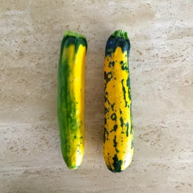 採れたて野菜たち。ズッキーニのごま和え。カリフロールのペペロン風。