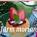 農園の午後とマイ梅干しレシピとくうねるランチ