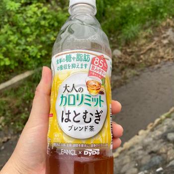 ダイドードリンコ 大人のカロリミット はとむぎブレンド茶