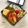 胸肉と野菜のタイ風炒めのお弁当