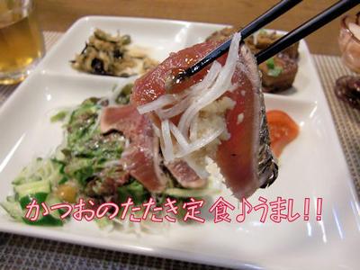 【鰹のたたき】&【豚肉団子】の定食♪&タロウはホットスポット「最後の楽園」が好き♪