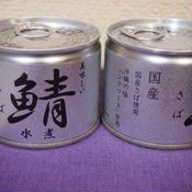 鯖水煮 伊藤食品株式会社