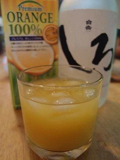 オレンジ酎