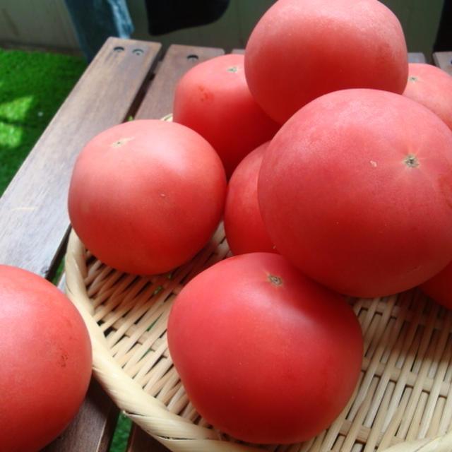 桃太郎トマトを使って