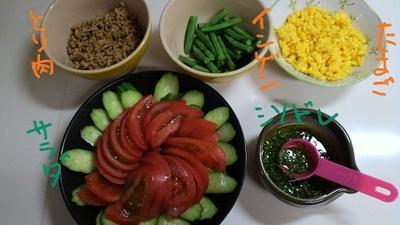 三色丼と大葉&おろしニンニクドレ。