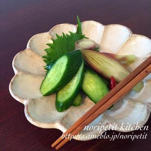 箸休めにおすすめ!「昆布茶」で野菜のかんたん漬け