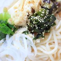さぬきうどんの亀城庵「豪華福福讃岐うどんセット」の並切麺で具沢山冷ぶっかけうどん♪