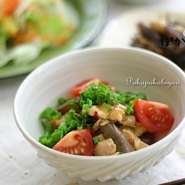 蒸し鶏と茄子のピリ辛和え と、意味ナッシング