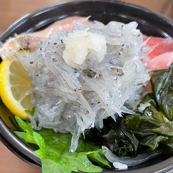 淡路島に生しらす丼食べに行って、美味しいジェラートのお店見つけました!