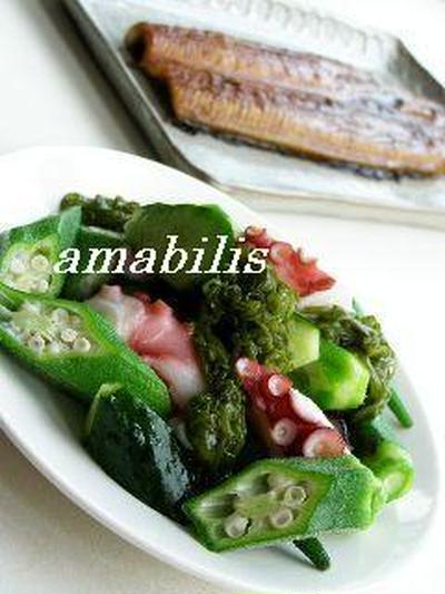 夏野菜のさっぱりサラダとうなぎ蒲焼き定食