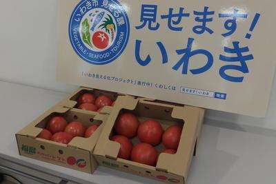 かな姐さんと一緒にいわき市のトマトの美味しさを実感しよう♪に参加