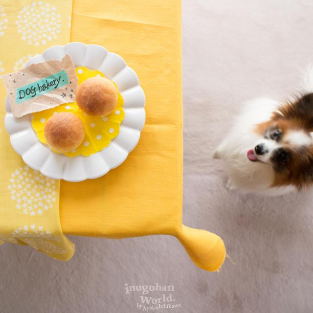 ■わんこのためのセミハードたまごパン(手作り犬おやつレシピ)