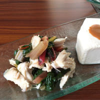 カラフルな小松菜みたいな野菜