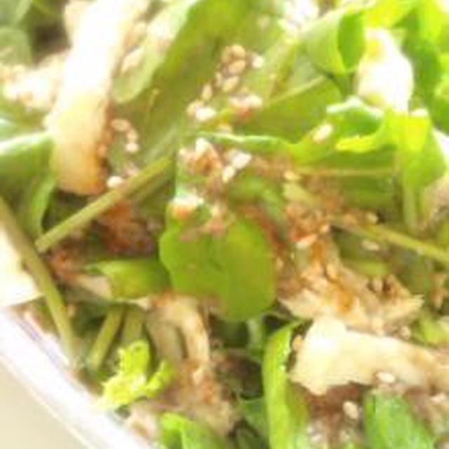 ベジリンクさんのお野菜で゚・*:.。..。.:*・゚゚・*:.。..。.:*・゚