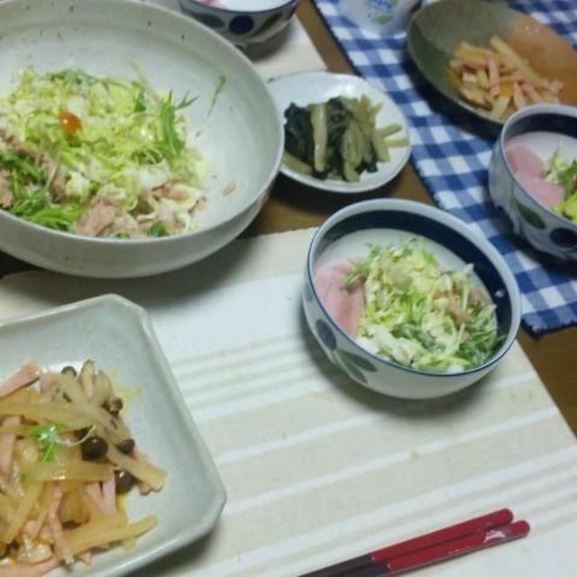 大根とハムとしめじのラー油風味&自家製キャベツと水菜のコールスローツナサラダ (キッチン ラボ)