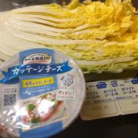 カッテージチーズで、白菜のクリーム煮を作ってみました。