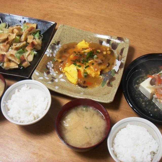 昨夜は卵の野菜あんかけなど~それと昼間のお出かけ!