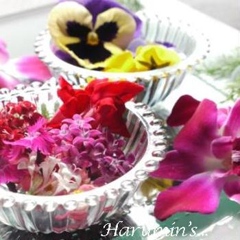 エディブル・フラワー ~edible flower
