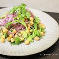 ひよこ豆と彩り野菜のサラダ