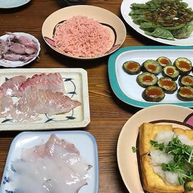 鯛とスズキの刺身など居酒屋風の晩ご飯