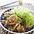 ☆豚肉と茄子ピーマンのオイスターマヨペッパー炒め / 13日の昼ごはん☆